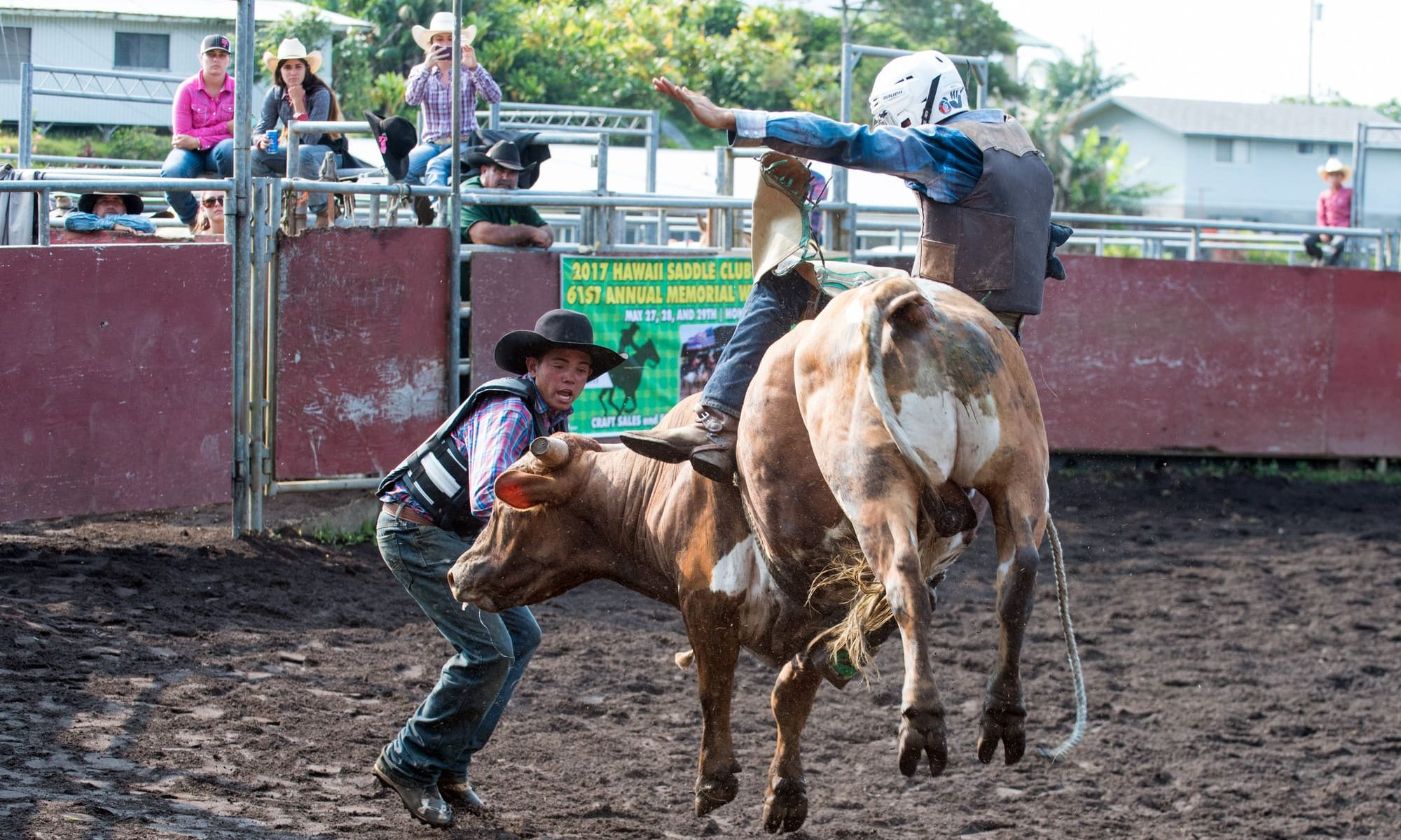 rodeo at rose andrade arena